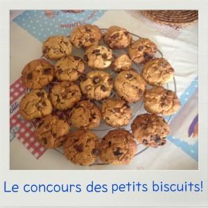 Cookies moelleux au chocolat et fleur de sel